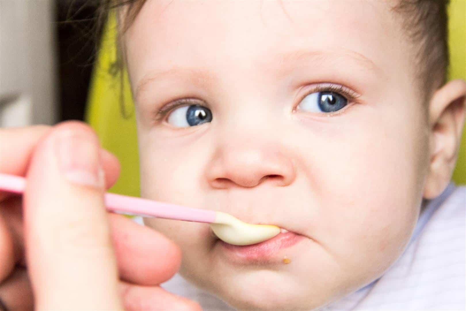 Baby Toddler Kidney Bean Puree Home Sweet Sweden