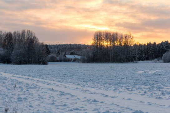 Swedish Countryside - Sun setting across the fields