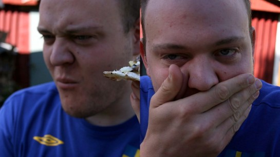 Tasting the surströmming