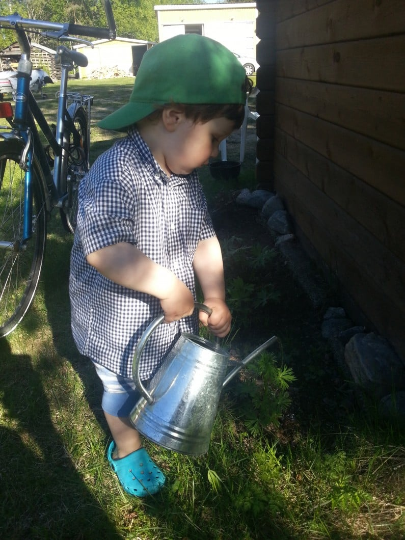 William watering the plants